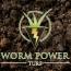Digging Deep – Worm Power Turf